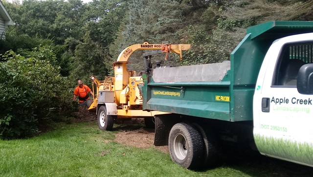 Tree limb and brush chipping - Apple Creek