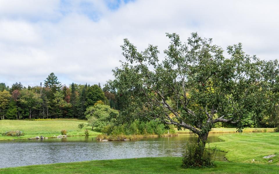 Apple Creek Landscaping